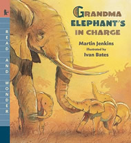 Grandma Elephant's in Charge by Martin Jenkins